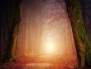 Arcano XIX: el Sol