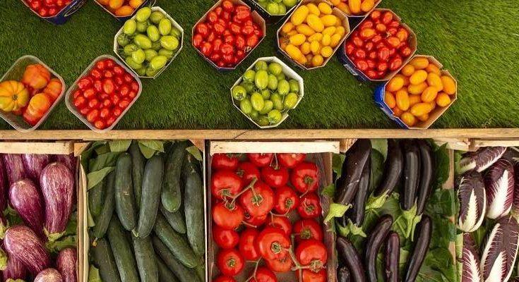 Medidas establecidas para apoyar a la economía del sector agrario